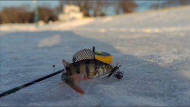 rybaki