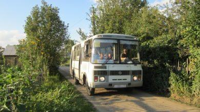 avtobusy v sady