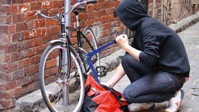 velosipednyj vor